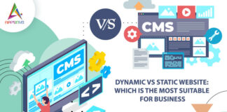 Dynamic-Vs-Static-Website-Which-is-the-Most-Suitable-for-Business-byappsinvo