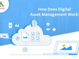 How-Does-Digital-Asset-Management-Work-byappsinvo