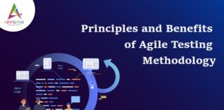 Principles & Benefits of Agile Testing Methodology-byappsinvo